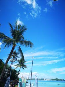 海!青い空!